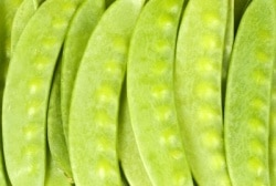 Asian Snow Pea Salad